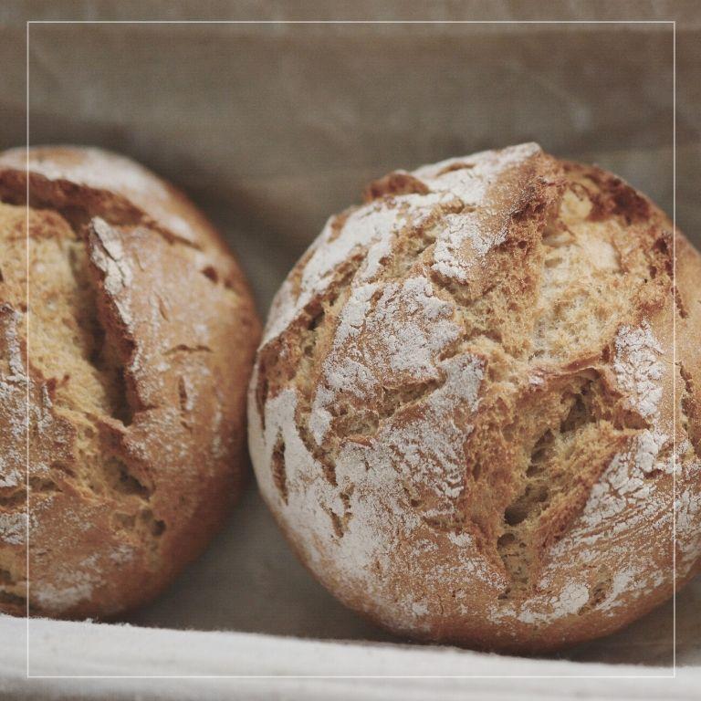 Villa Fontana e il territorio: il pane di antichi forni