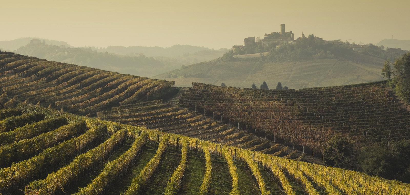 Tra Langhe e Monferrato ha sede Villa Fontana, Relais e Suites